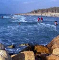 Al-Arish: Time to Relax
