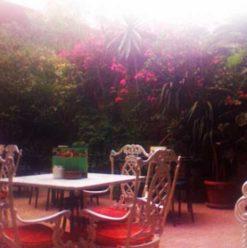 Café De Paris: Zamalek's Cosy Outdoor Shisha & Sandwich Spot