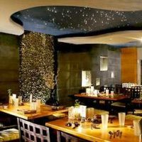 Torii Sushi:  Bright Lights, Little Sushi