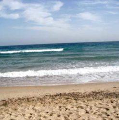Soft Beach:  A Treasured Nuweiba Camp