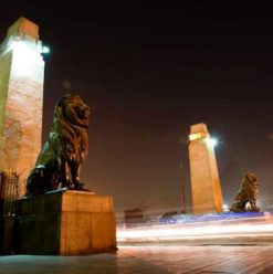 Cairo Weekend Guide: Concerts, Concerts, Concerts!