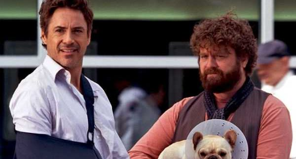 Due Date: Two Guys on a Road Trip