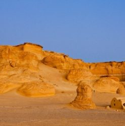 Cairo to Fayoum: Guide to a Day Trip in the Desert