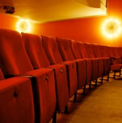 Entre Cineastas Festival 2011: Caravan of Films Now in Cairo