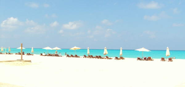 Al Alamein Hotel: Perfect but Pricey North Coast Beach