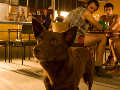 Red Dog: Touching, Feel-Good Family Film