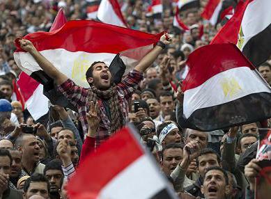 صناعة الأحزاب فى مصر بعد 25 يناير: كتاب صدر في توقيت مناسب