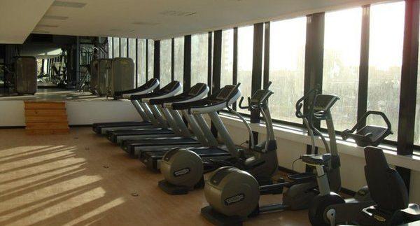 Optimum Gym: Comprehensive Gym & Martial Arts Classes in Maadi