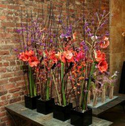 حصة تصميم زهور مجاني في ليفت بانك
