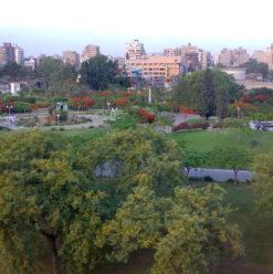 International Garden: Green Hideaway in Nasr City