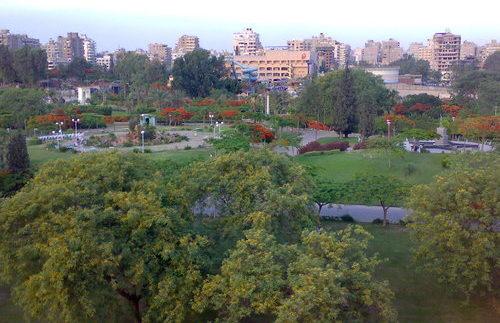 الحديقة الدولية: ملاذ أخضر فى مدينة نصر