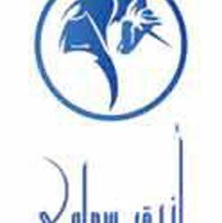 حفل فريق أزرق سماوي بساقية الصاوي