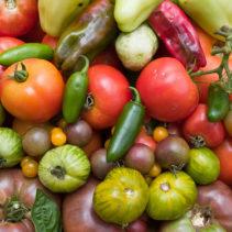 أورجانيك أند مور – Organic & More