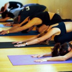 أشتانجا يوجا – Ashtanga Yoga
