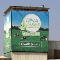 مزارع دينا