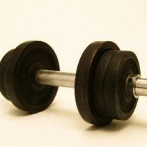 إكستريم جيم – Extreme Gym