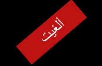 عزة بلبع بساقية الصاوي