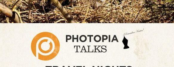 ليالي السفر في فوتوبيا: الحياة البرية في جنوب سيناء في فوتوبيا