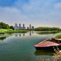 محمد على رويال كلوب: أجازة هادئة فى ضواحى القاهرة