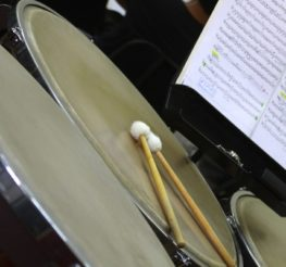 Cairo Symphony Orchestra Opens its 54th Season