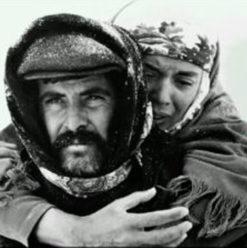 """عرض فيلم """"يول"""" في صوفي"""