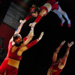 عرض سيرك موروسوف على مسرح الفلكي