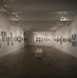 معرض الفنان عمرو الأسود بساقية الصاوي