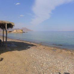 رأس سيناء: مخيم مفعم بالحيوية فى نويبع