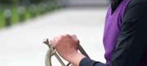 ترومبيت محمد حلمي مع شخصيات والت ديزني في الأوبرا