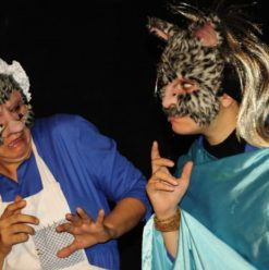 Sitara English Theatre & Art Workshops: Imaginative Edutainment Enterprise in Cairo
