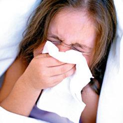 ندوة عن الأنفلونزا والشتاء في ساقية الصاوي