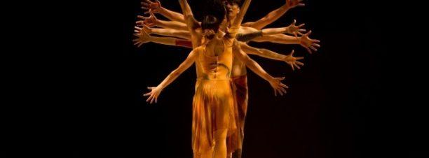مهرجان دي كاف: عرض بيلي كوي وفن الحركة في فندق فيينواز