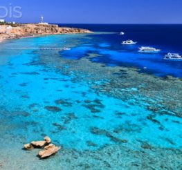 Sharm El Sheikh: Fun for the Whole Family Along the Red Sea in Egypt
