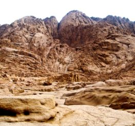 Mount Sinai: Red Sea Coast Adventure