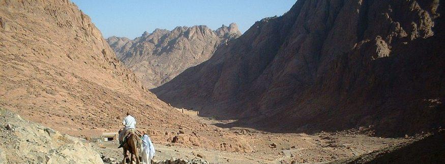 طور سيناء: كايرو 360 في مغامرة على ساحل البحر الأحمر