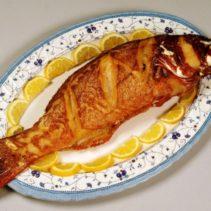 أسماك مرجان – Asmak Morgan