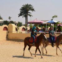 الريف العربى للخيول: استمتاع مختلف فى المريوطية