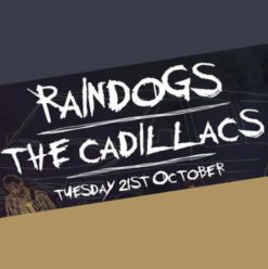 Raindogs & the Cadillacs at Cairo Jazz Club