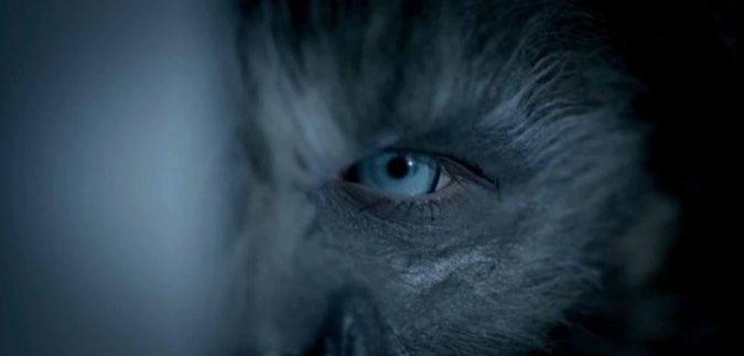 Wolves: Twilight Meets Teen Wolf in Humdrum Horror