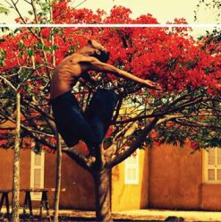 D-CAF  2017: The Question is African Dance at AUC Falaki Theatre