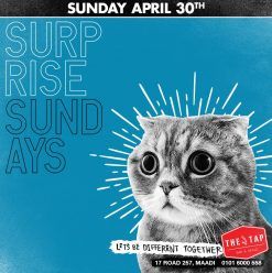Surprise Sundays at The Tap Maadi