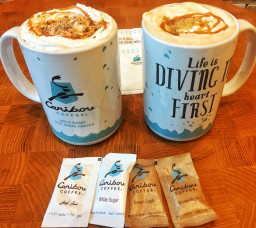 Caribou: International Coffee House Comes to Mall of Egypt