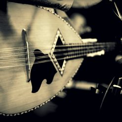 8 Concerts to Go to in Cairo This Week