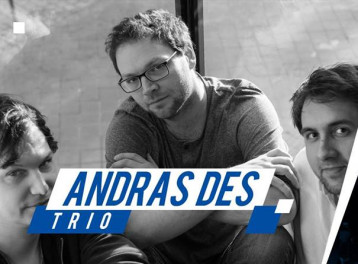 Andras Des Trio at ROOM Art Space