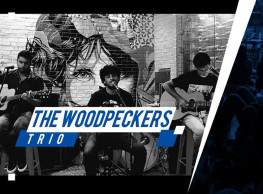 The Woodpeckers Trio at ROOM Art Space