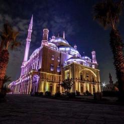 The Citadel Music Festival: A Grand Music Festival at a Grand Historic Venue