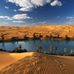 Faiyum: One of Egypt's Most Overlooked Travel Destinations