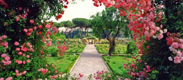 أحلى حديقة في القاهرة؟ كل اللي محتاج تعرفه عن الحديقة المركزية بالشيخ زايد