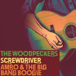 The Woodpeckers / Screwdriver / Amro & the Big Bang Boogie @ Cairo Jazz Club