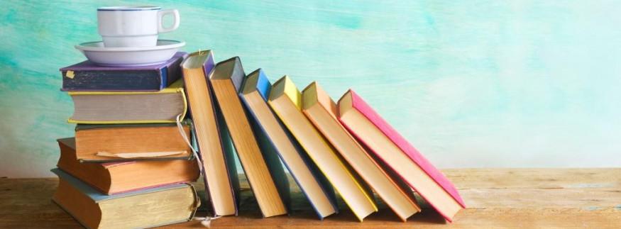 20 ألف كتاب بسعر مخفض في معرض الدقي… فين عشاق الكتب؟